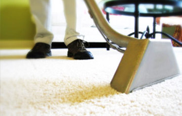 How to Choose a Professional Carpet Cleaning Company