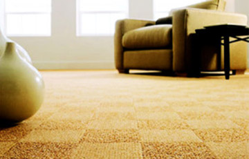 Protect Your Carpet Color