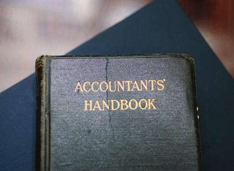 audit professionals